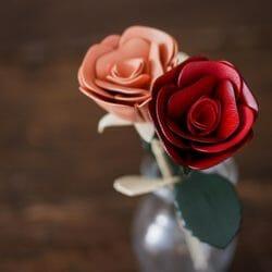JOGGO母の日バラ
